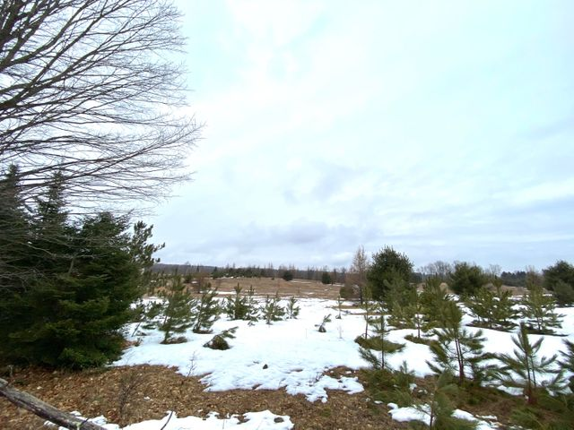 10 Acres Ring Rd, Wagner, WI 54177