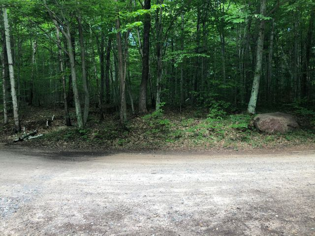 8.91 Acres Wolfe Ln, Silver Cliff, WI 54104