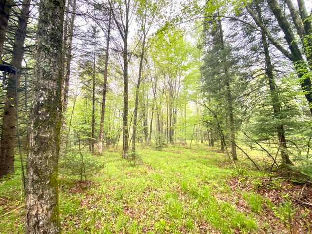 W6896 Wayside RD, Middle Inlet, WI 54114