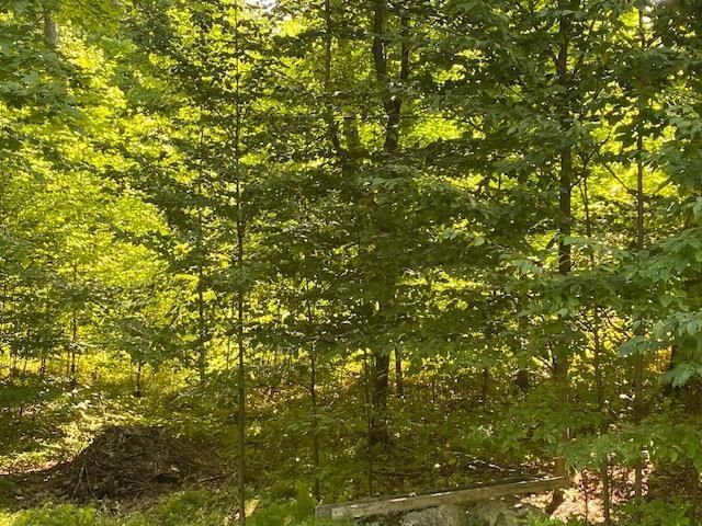 N12986 Berry Wood Trail, Silver Cliff, WI 54104