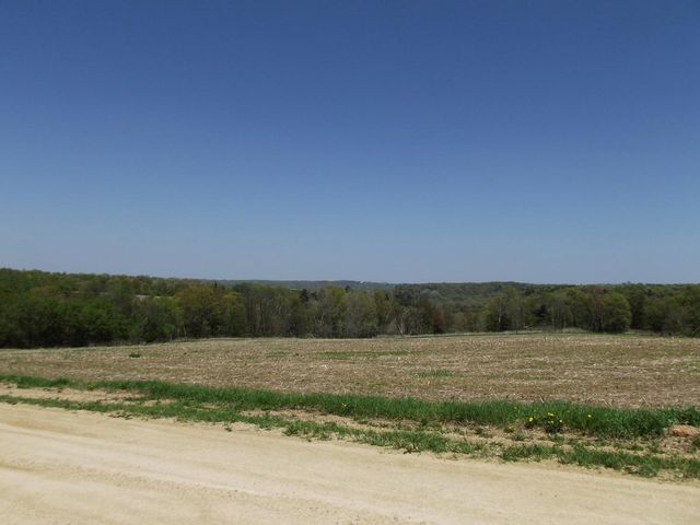 Beautiful building site with mostly open field and some woods in a nice rural setting. 16+- acres to be surveyed. Tillable is certified organic.