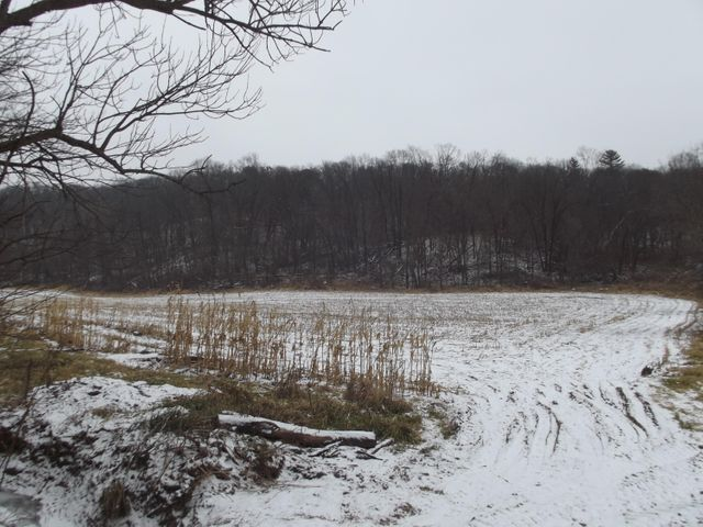 15+/- acre parcel with a nice mix of open and woods with stream! Nice valley setting with approximately 6 acres of tillable. Possible building site and great investment for ag and/or recreational uses. Easy 15 minute drive to I-90 in Tomah or 25 minutes to Sparta.