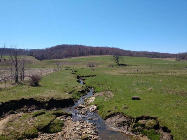 80 +/- acre mostly tillable parcel with stream! Very productive piece with approximately 53.5 acres currently being planted and remainder is pastured. Stream stays open year-round! Easy 15 minute drive to I-90 in Tomah or 25 minutes to Sparta. Additional land available!