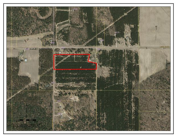12.5 +/- acres of pine forest on a quiet rural road. Was previously planted/used as a Christmas Tree Farm. Many signs of wildlife, especially deer. High voltage overhead transmission lines cross property, see map and photos for details.