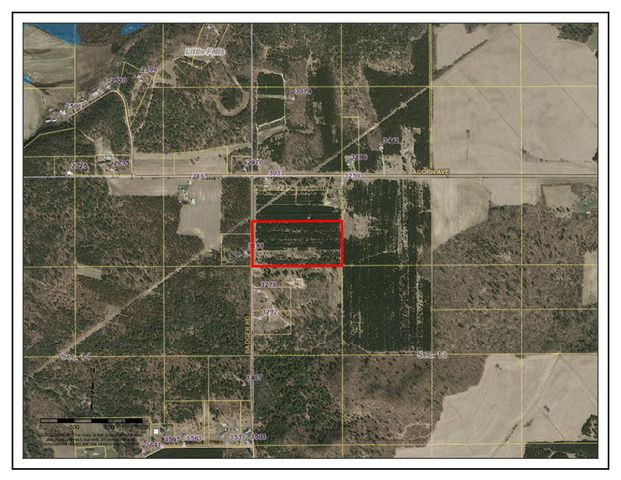 20 +/- acres of pine forest on a quiet rural road. Was previously planted/used as a Christmas Tree Farm. Many signs of wildlife, especially deer.