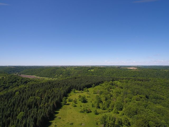 Enjoy this 110 acre wooded property with amazing views. Pine and birch forest cover the vacant land. Stream bed, springs, small pond and more great natural features.