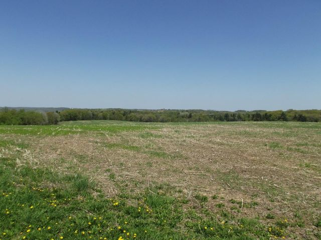 Beautiful building site or investment opportunity for a cash crop farmer. 30+/- acres of nice, gently sloping tillable land.
