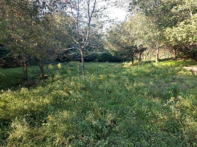 13.49 surveyed acre parcel with the potential for a very nice secluded building site. 3.5 acres currently being farmed in hay. Remaining 10 acres is a mix of woods and open pasture.