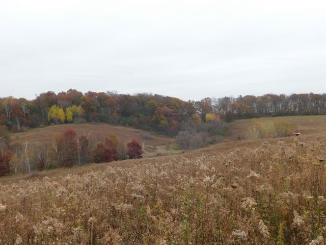 51+/- acres nestled in the hills of Portland township. Perfect land for hunting and pasture. 26.2 tillable acres (according to FSA map) has laid fallow.tax parcels 032-00383-0000 and partial of 032-00384-0000