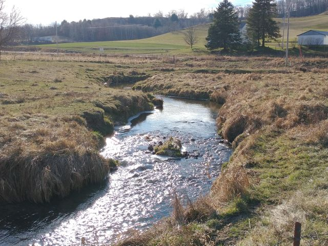 This 150 +/- acres offers a beautiful mix of productive tillable, pasture and woods. Also includes a 54x54 machine shed, 28x72 heifer shed w/28x54 storage area and old building site. Well and electricity are present. Would make a wonderful beef farm with the stream and springs to water your herd. Approximately 85 tillable was planted in corn for 2020. Brushy pockets make for great bedding areas for whitetail and turkey. The back corner of the property has mature hardwoods which adds some timber value. The existing field road makes for easy access to explore this unique tract of land! Farming, hunting, investment or build your dream home!