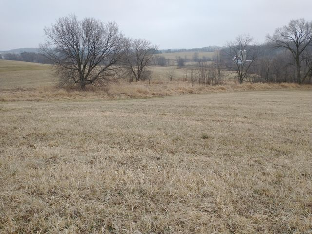 Beautiful 40 acre parcel on the outskirts of Tomah. Currently used as ag fields but would be a wonderful building site for your dream home! Top of the hill provides long-range views. Land is gently sloped and nearly all tillable. A few patches of trees and a year-round spring attract wildlife. The corner of the south fork of Lemonweir River add to the value here!