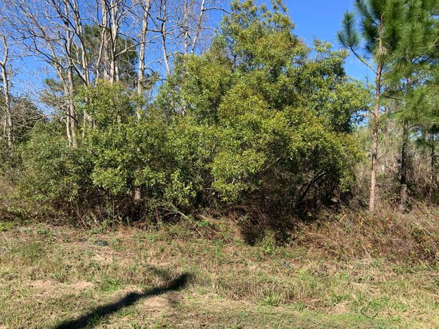 Waterfront Lot on Zimple