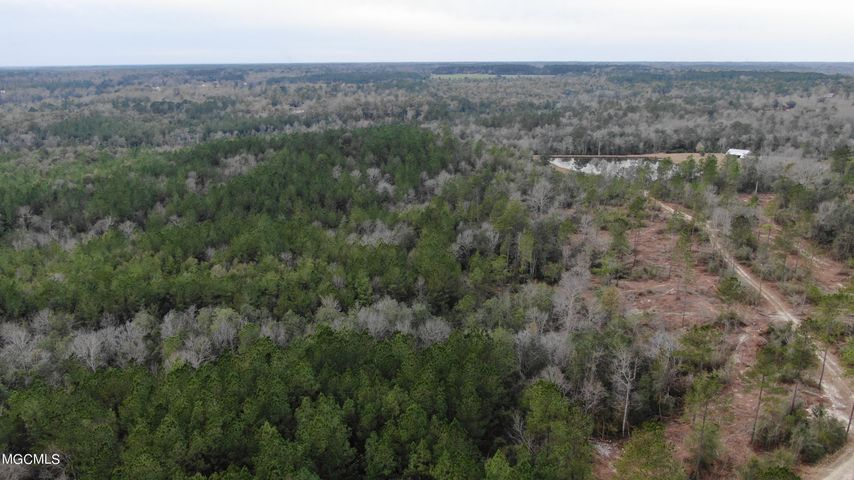 Very private 80 acres with red creek running through the back of property.  Beautiful terrain with rolling land would make a great homesite!