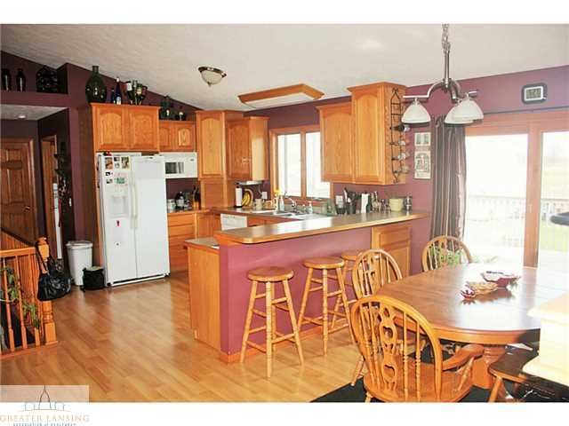 8823 S Morrice Rd - Additional Photo - 7