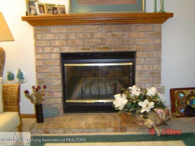 664 John R St - Living Room Fireplace - 7