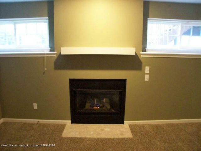 11233 Carousel Dr - 11233 Carousel Lower Level Fireplace - 34