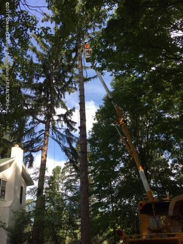 4895 Barton Rd - Tree Removal Project - 32