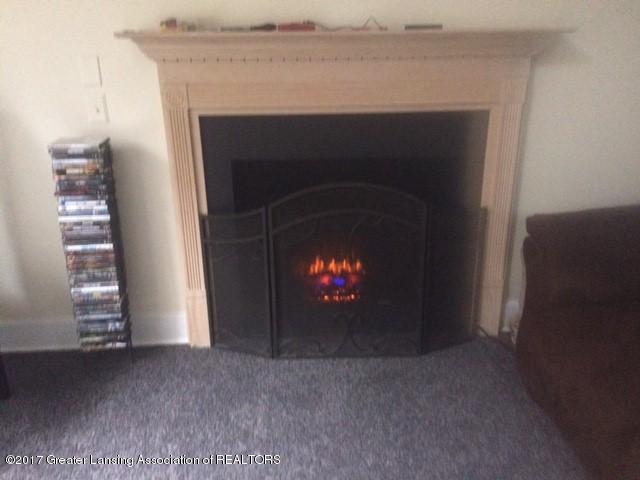 7458 Nolan Dr - Fireplace 2 - 3