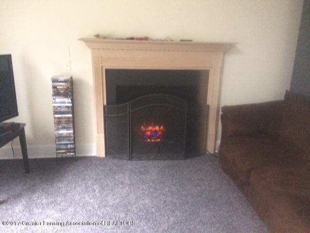 7458 Nolan Dr - Fireplace - 4