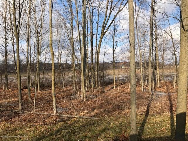 4930 N Campers Trail - View - 15