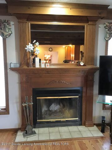2530 Kinloch Cir - fireplace - 14