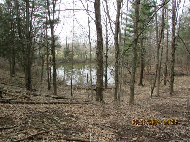 Some of the pond is on Subject Property