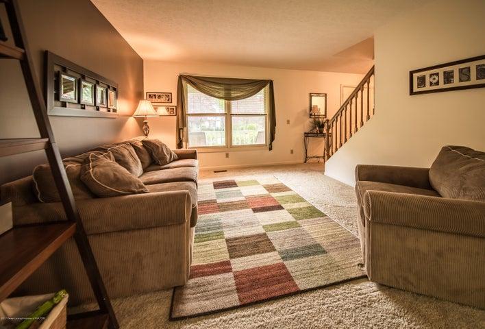 3910 Camperdown Dr - Living Room - 7