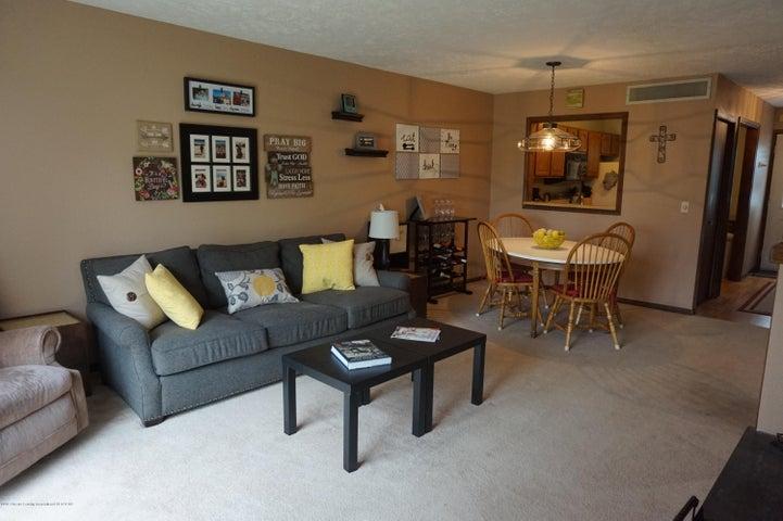 1519 Erica Ln 20 - living room - 4
