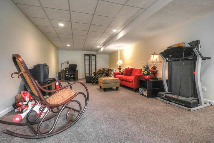 407 W Dill Dr - Rec Room - 20
