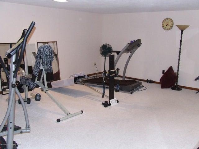 1083 Brookside Dr - Lower level workout room - 17
