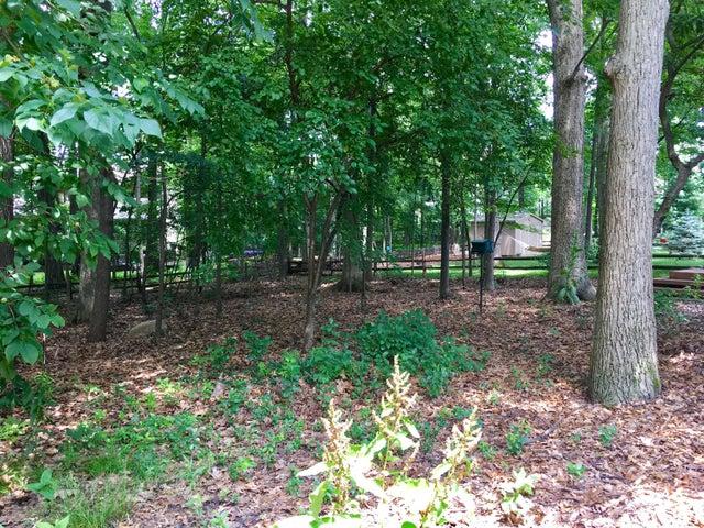 1132 Woodwind Trail - Yard - 5