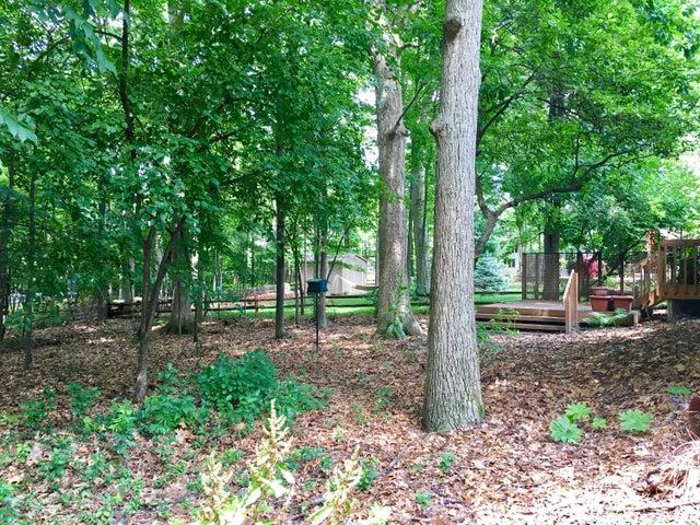 1132 Woodwind Trail - Yard - 6