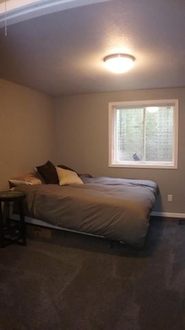1811 Merganser Dr - M bedroom lower level - 39