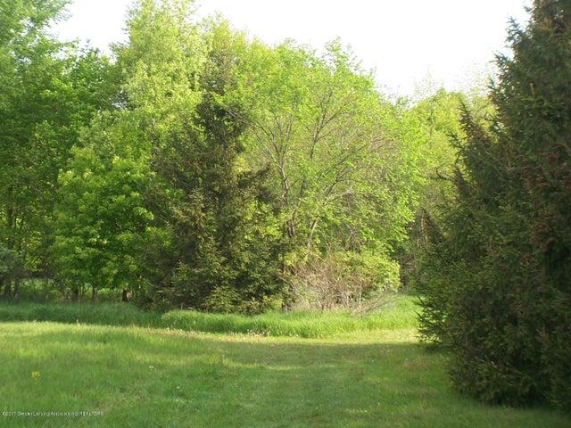 1 Woodlawn, Perrinton, MI 48871