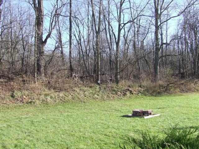4936 Pine Hill Dr - Yard - 19