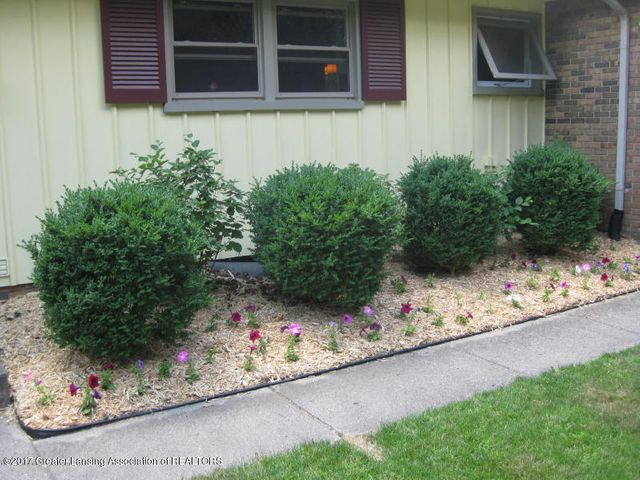 805 Cowley Ave - Landscaping - 3