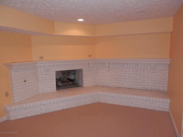1401 Dennison Rd - Raised gas fireplace - 38