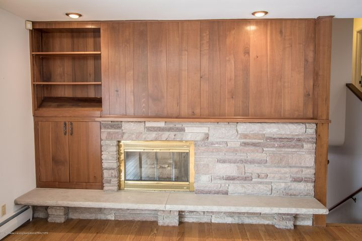 321 Loree Dr - Gas Fireplace/ Living Room - 7