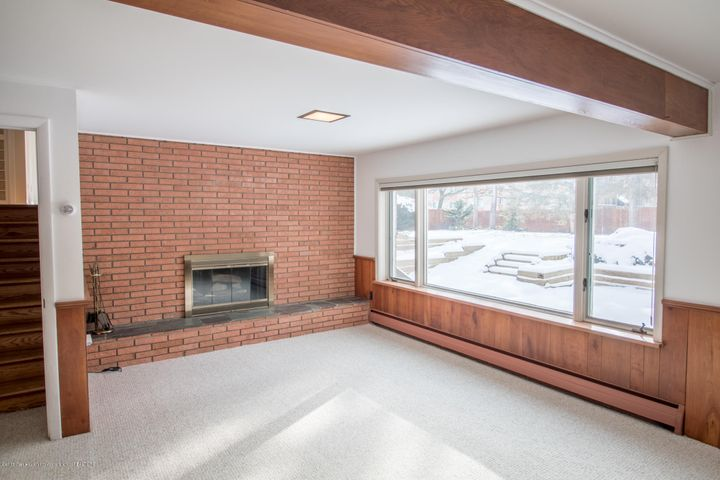 321 Loree Dr - Wood Burning Fireplace/ Lower Level - 23