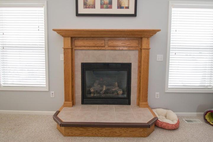 1819 Merganser Dr - Fireplace - 5