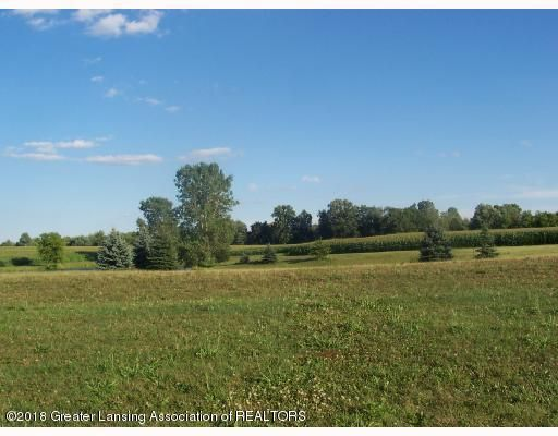 0 Morrice Rd - vacant land picture - 1