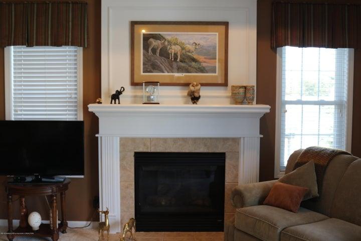 3998 Canyon Cove 48 - fireplace - 14