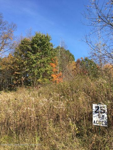 Lot 25 Jacob Court, Dimondale, MI 48821