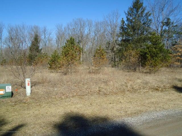 0 Snowy Pine Lot D Drive, Charlotte, MI 48813