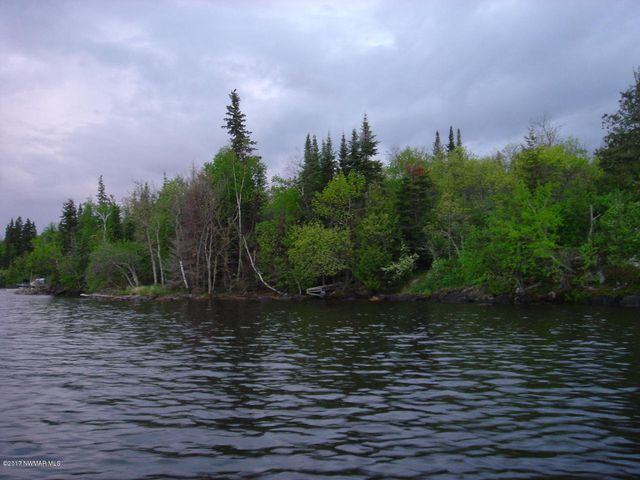14 Brush Island, Angle Inlet, MN 56711