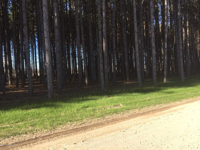 Norway Pine Drive, Salol, MN 56756