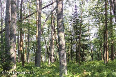 Lot 12 Lakeridge Lane NW, Bemidji, MN 56601
