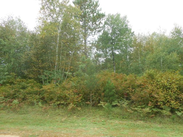 TBD Mayberry Loop, Cass Lake, MN 56633