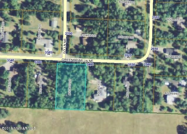 Greenbriar Lane NE, Bemidji, MN 56601