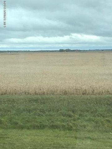 TBD JCT OF 260th Ave & 270th Street, Badger, MN 56714